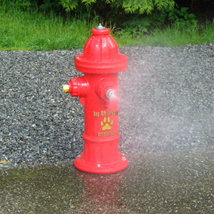 7270 (DOI) - Spray Hydrant