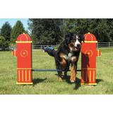 6521-DGI - Dog On It- Adjustable Jump Bar