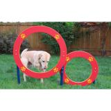 6522-DGI - Dog On It- Double Hoop Jump