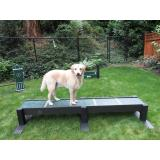 R7603-DGI - Dog On It- Eco Balance Beam
