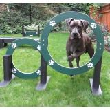 R7609-DGI - Dog On It- Eco Double Hoop Jump