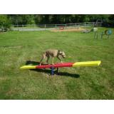 6412-DGI - Dog-ON-it Teeter Totter