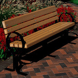 FP2200-BI - Hoop Recycled Plastic Bench with Back