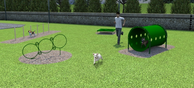 Small Dog Course